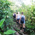 Jungle wandeling