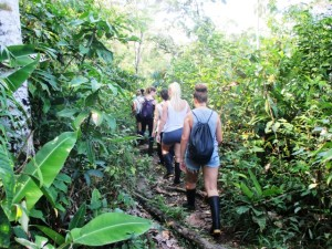 Spanish classes in Ecuador, a jungle walk