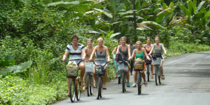 Bicycle tours from Puerto Viejo to Manzanillo