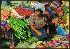 Guatemalan market. Spanish course and culture