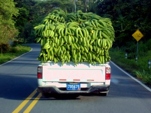 bananentransport in Costa Rica